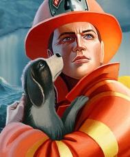 Серия игр Отважные спасатели